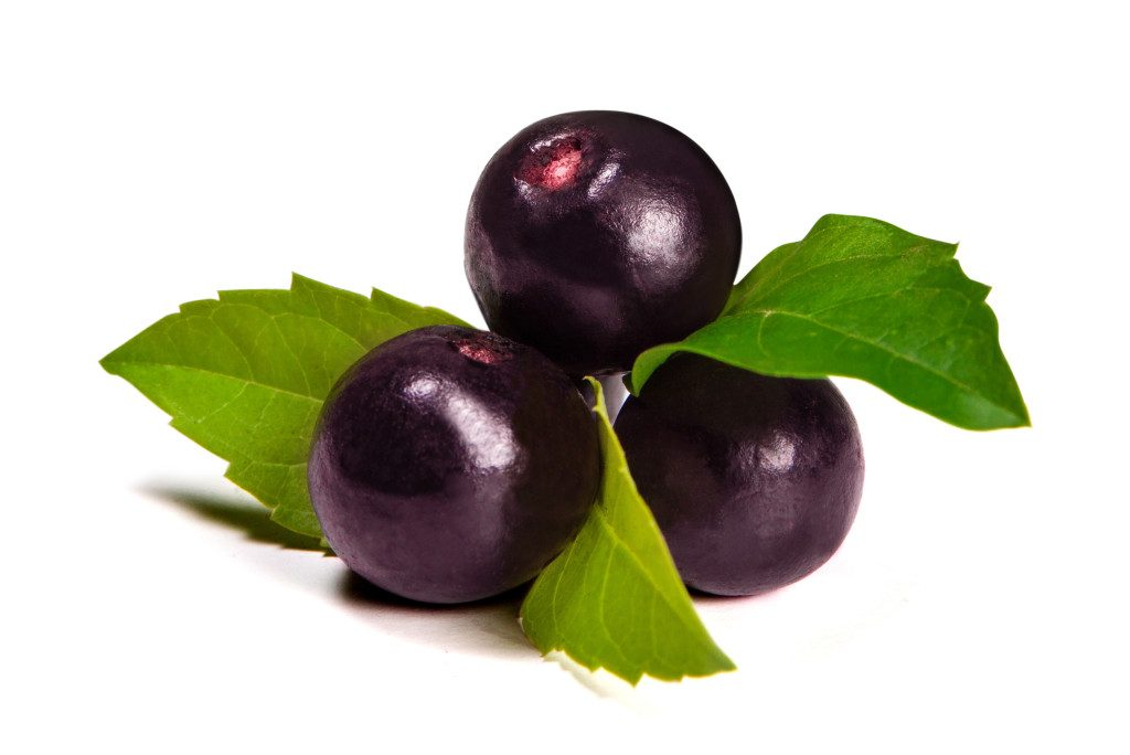 La baie de Maqui, un fruit exotique est un anti cancer naturel comme le feuille de graviola corossol